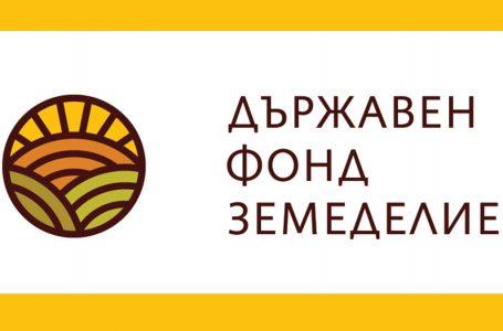 До 31 юли се приемат заявления за подпомагане за инвестиции в кланиците